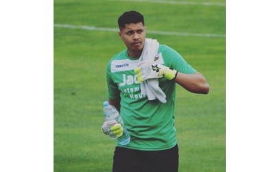 Another Professional Goalkeeper